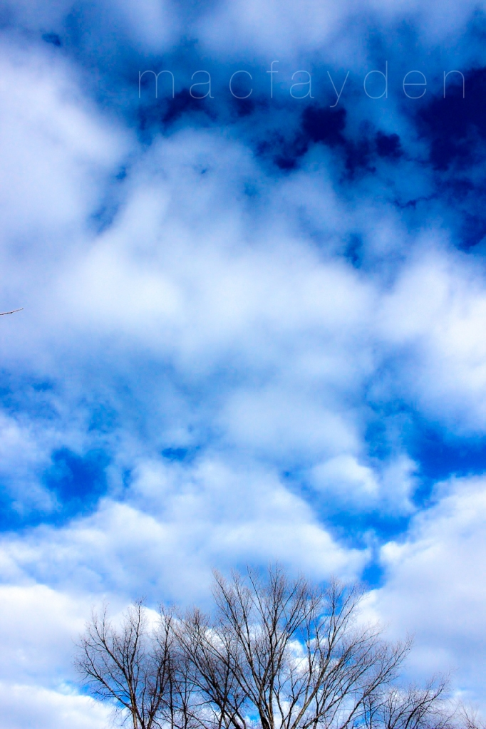 january afternoon sky