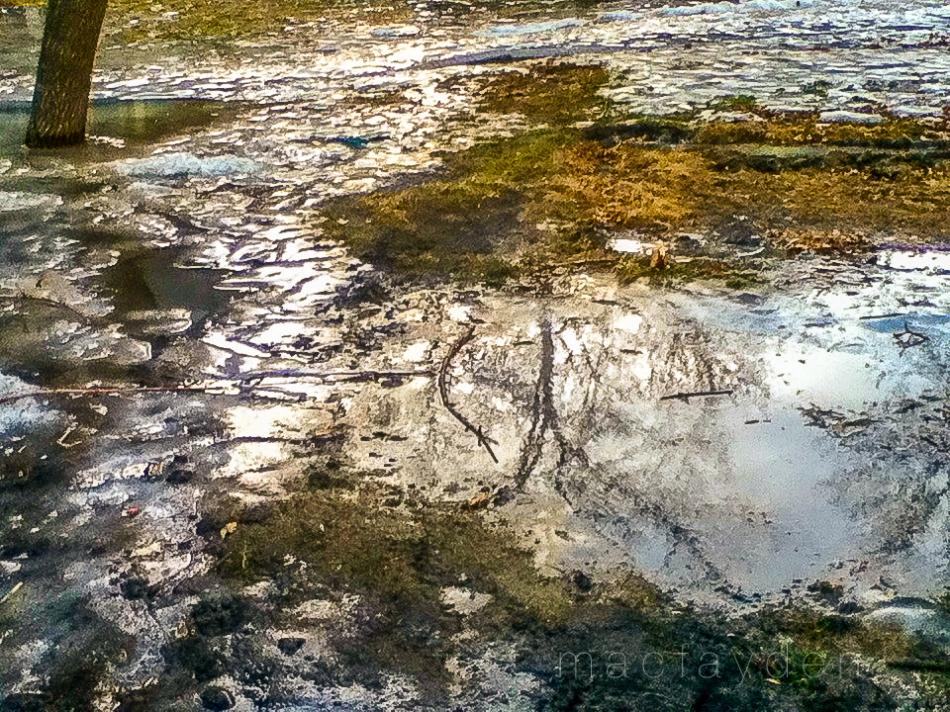 puddle5